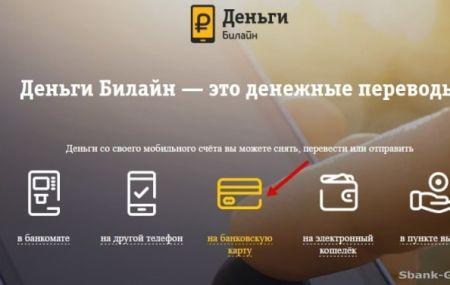 Перевод денег с телефона Билайн на карту Сбербанка: инструкции и способы