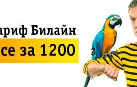 Тариф Билайн «Всё за 1200»: подробно