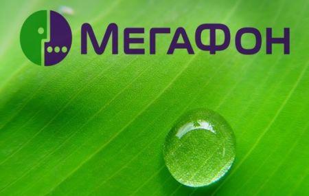 Как посмотреть тариф на Мегафоне