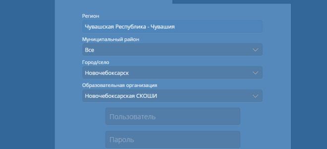 Сетевой город образование Новочебоксарск: электронный дневник и журнал