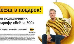Тариф Билайн «Все за 300» рублей в месяц: подробно